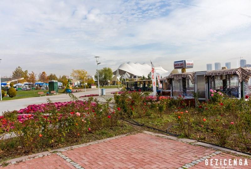 Ankara Harikalar Diyarı