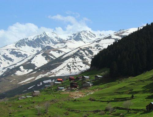 Erzurum'da Nerede Kalınır ? | Erzurum Otel Tavsiyeleri