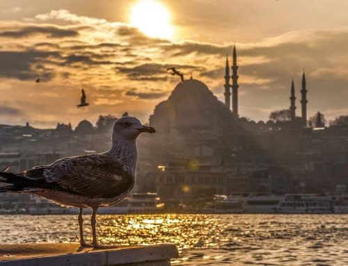 İstanbul Otelleri | İstanbul Otel Fiyatları