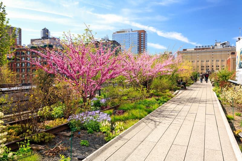 High Line'da Yürüyün