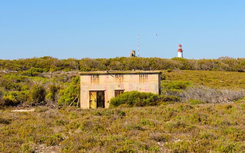 Robben Adası
