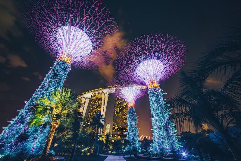 Botanik Bahçesi Singapur