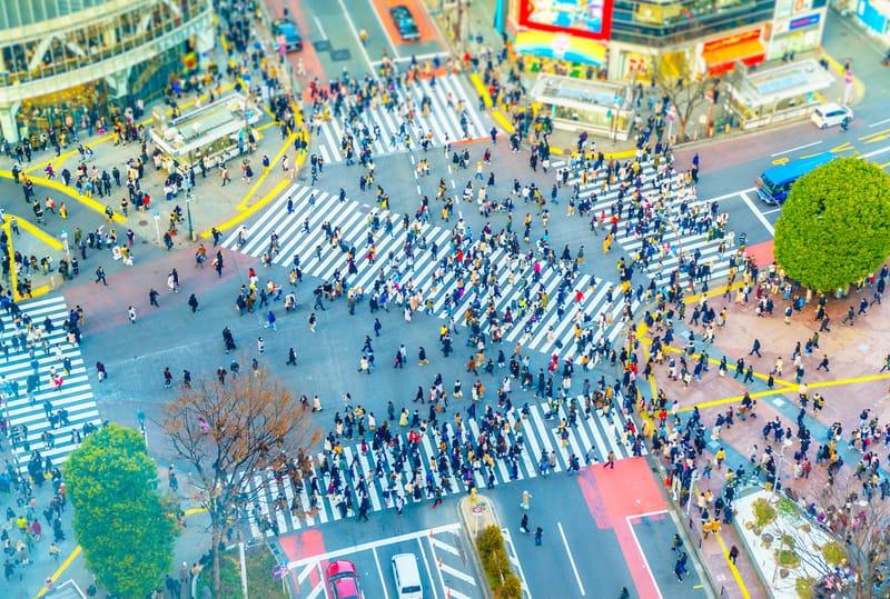 Shibuya Bölgesi Tokyo'da Nerede Kalınır ?