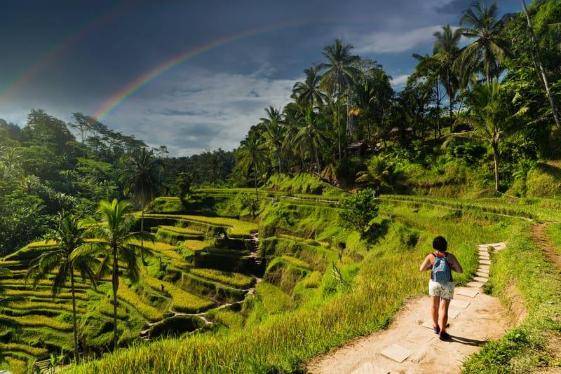 Ubud Bölgesi Bali