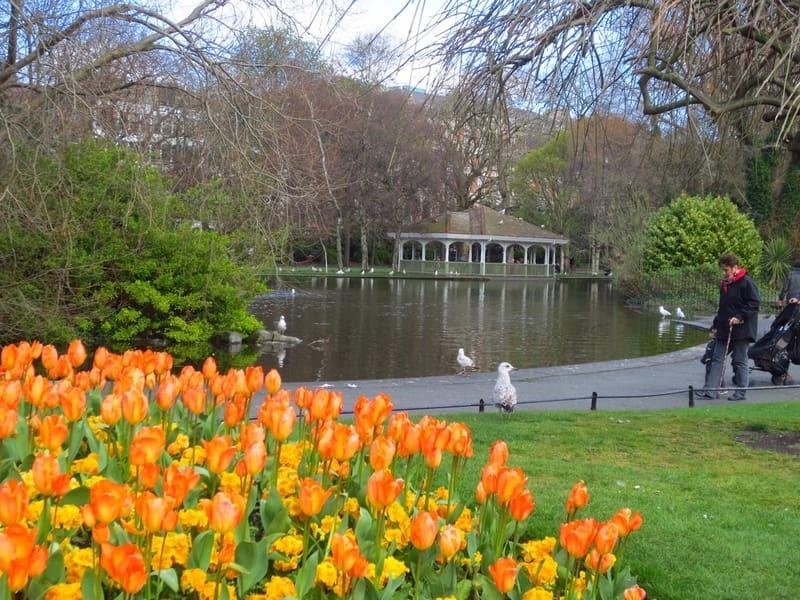 Aziz Stephen'ın Yeşil Parkı