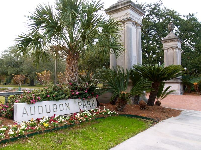Doğa Enstitüsü New Orleans