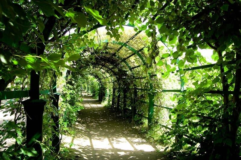 Botanil Bahçesi