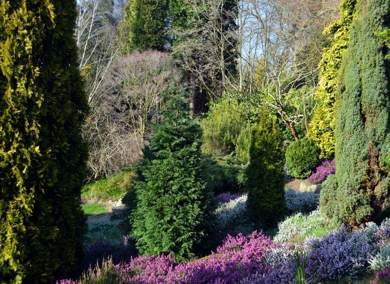 Fletcher Moss Botanik Bahçesi Manchester