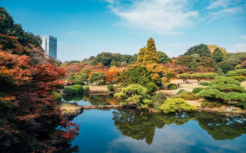 Shinjuku Gyoen Ulusal Bahçesi