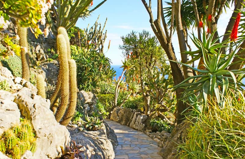 Egzotik Bahçesi Monaco