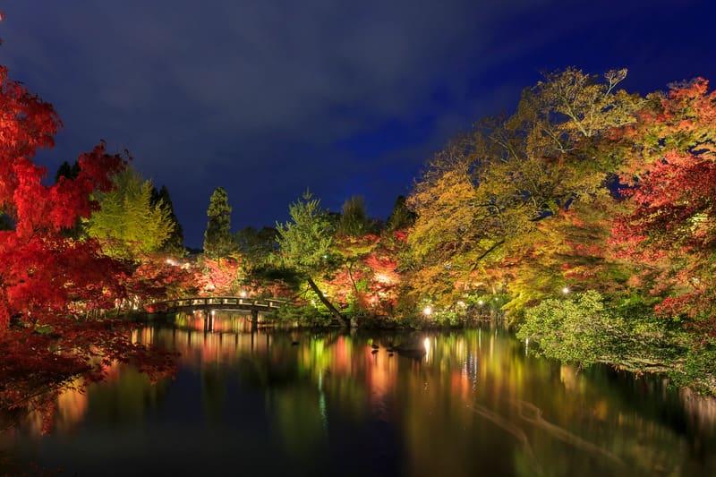 Eikando Zenrinji Tapınağı Kyoto