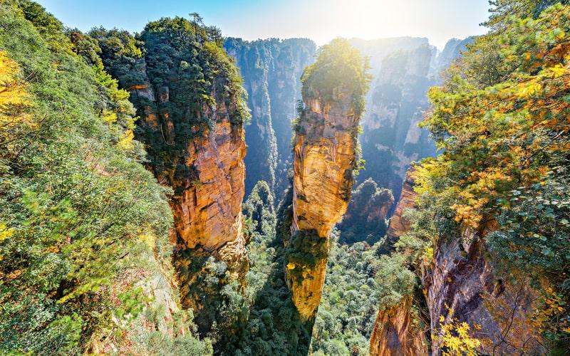 Zhangjiajie Ulusal Orman Parkı