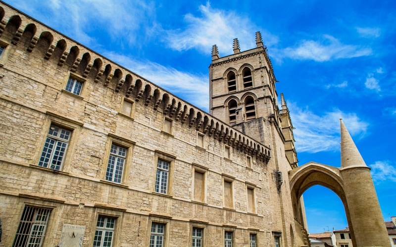 Saint Peter Montpellier Katedrali